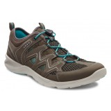 ECCO TERRACRUISE LADIES damsko, TERRACRUISE LADIES damsko, Warm Grey/Dark Clay/Turquoise